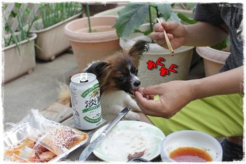 047kuramoka1_20110522133347.jpg