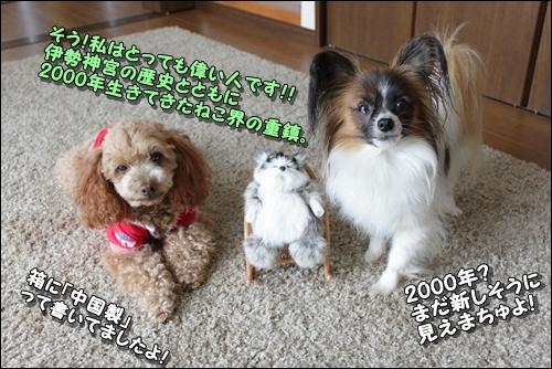 047kuramoka1_20110531161117.jpg