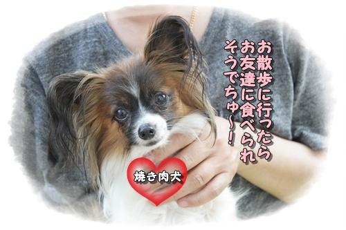 053kuramoka1_20110522133503.jpg