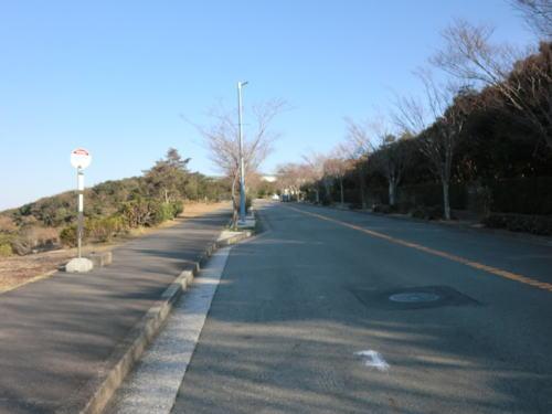 20131207_shonan_k_mura_8