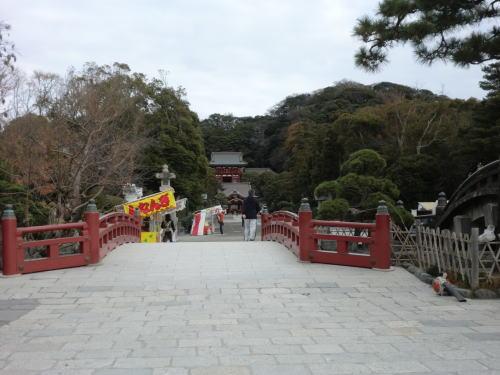 20131208_tateisi_pota_2.jpg