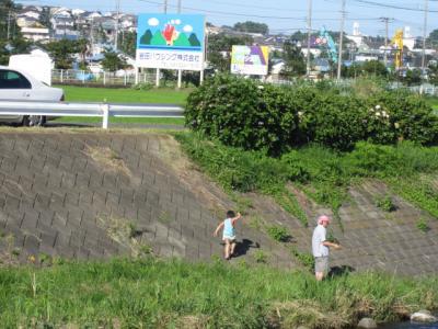 川遊びのお父さんに子どもがつき合っています