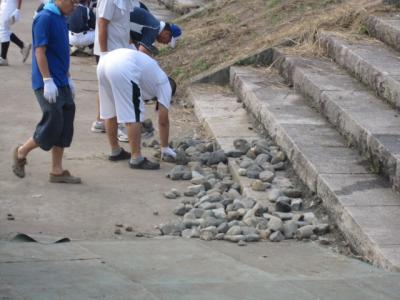 シートを押さえていた石