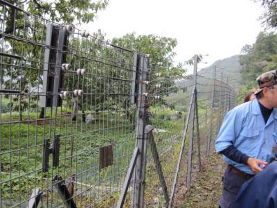 獣害防護柵、上部に電線と碍子
