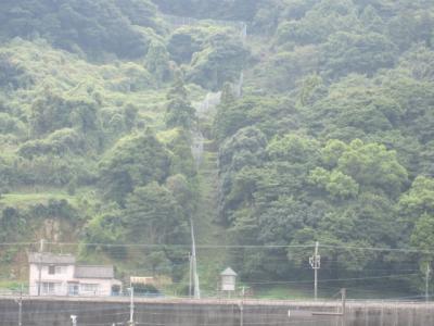 高崎山のサルのための柵