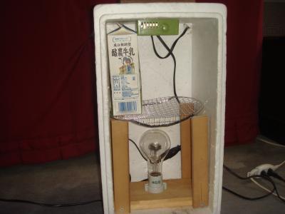 自作の発酵器