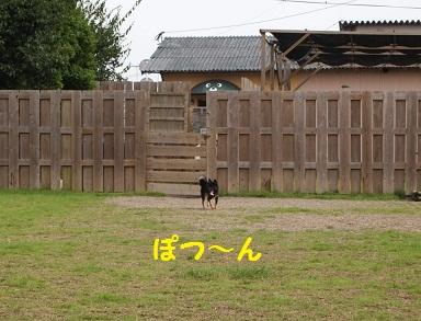 P7041002.jpg