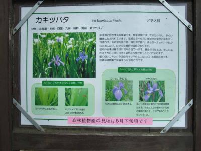 mini_92_kanban_DSCF4066.jpg