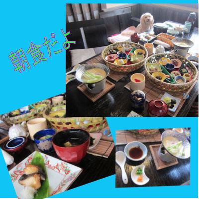 2011.7.3ママたち朝食