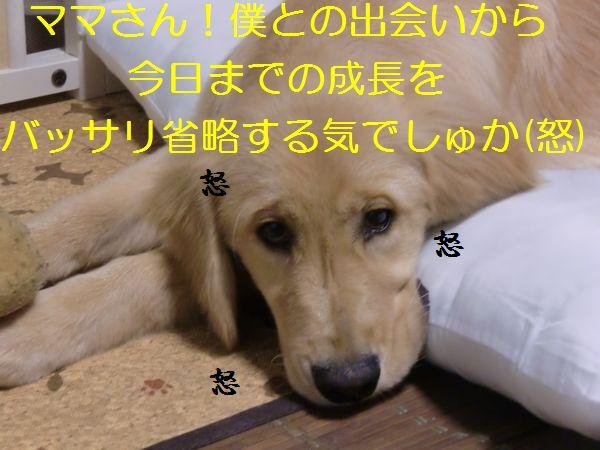 20100719_04.jpg