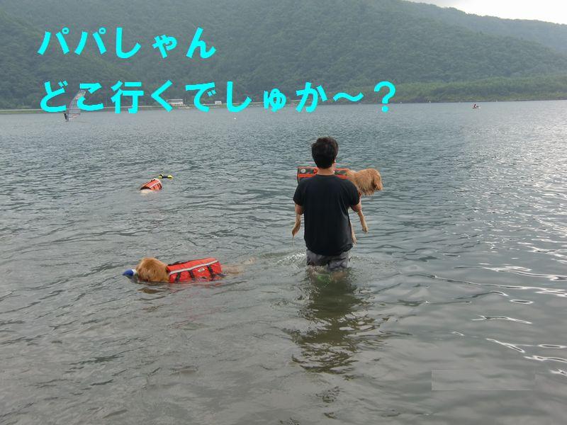 20100806_05.jpg