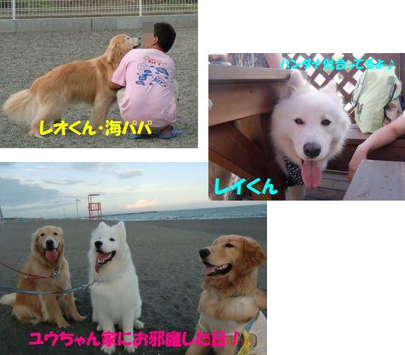 201008_01blog.jpg