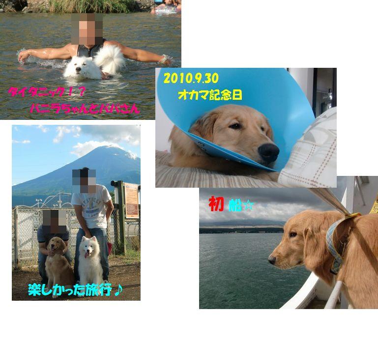 201009blog.jpg