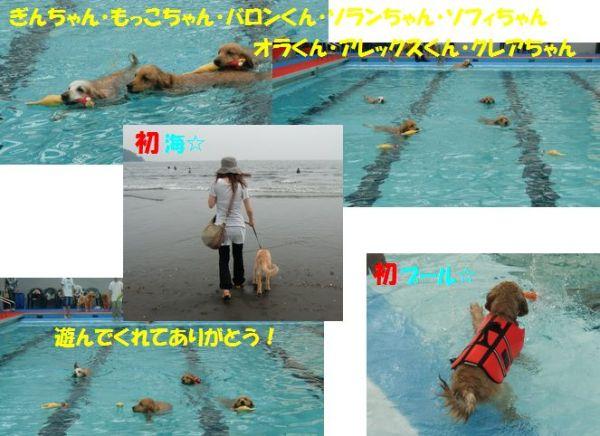 2010066blog (2)