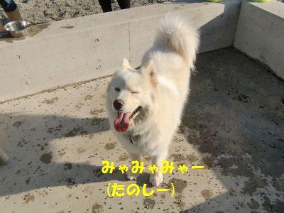 201101_6.jpg