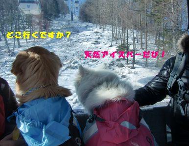 blog20110123_1.jpg