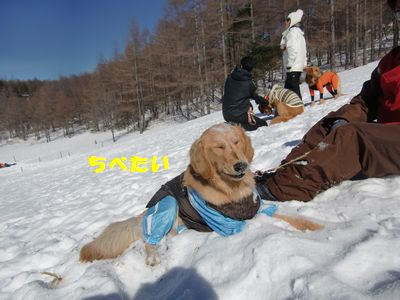blog20110123_4.jpg