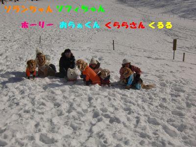 blog20110123_5.jpg