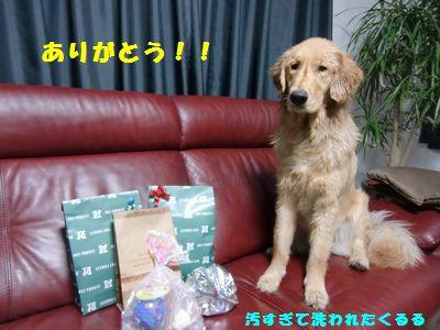 blog201101_8.jpg