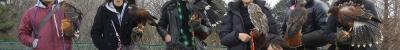 1-11-2__20120107104516.jpg
