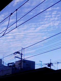 うろこ雲 100909_0609~001