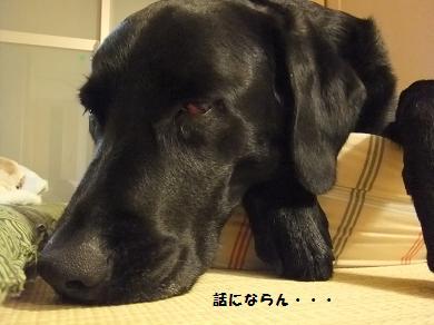 因みにアタシ昭和で言うたら79年生まれです♪