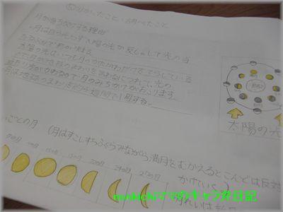 CIMG4672.jpg