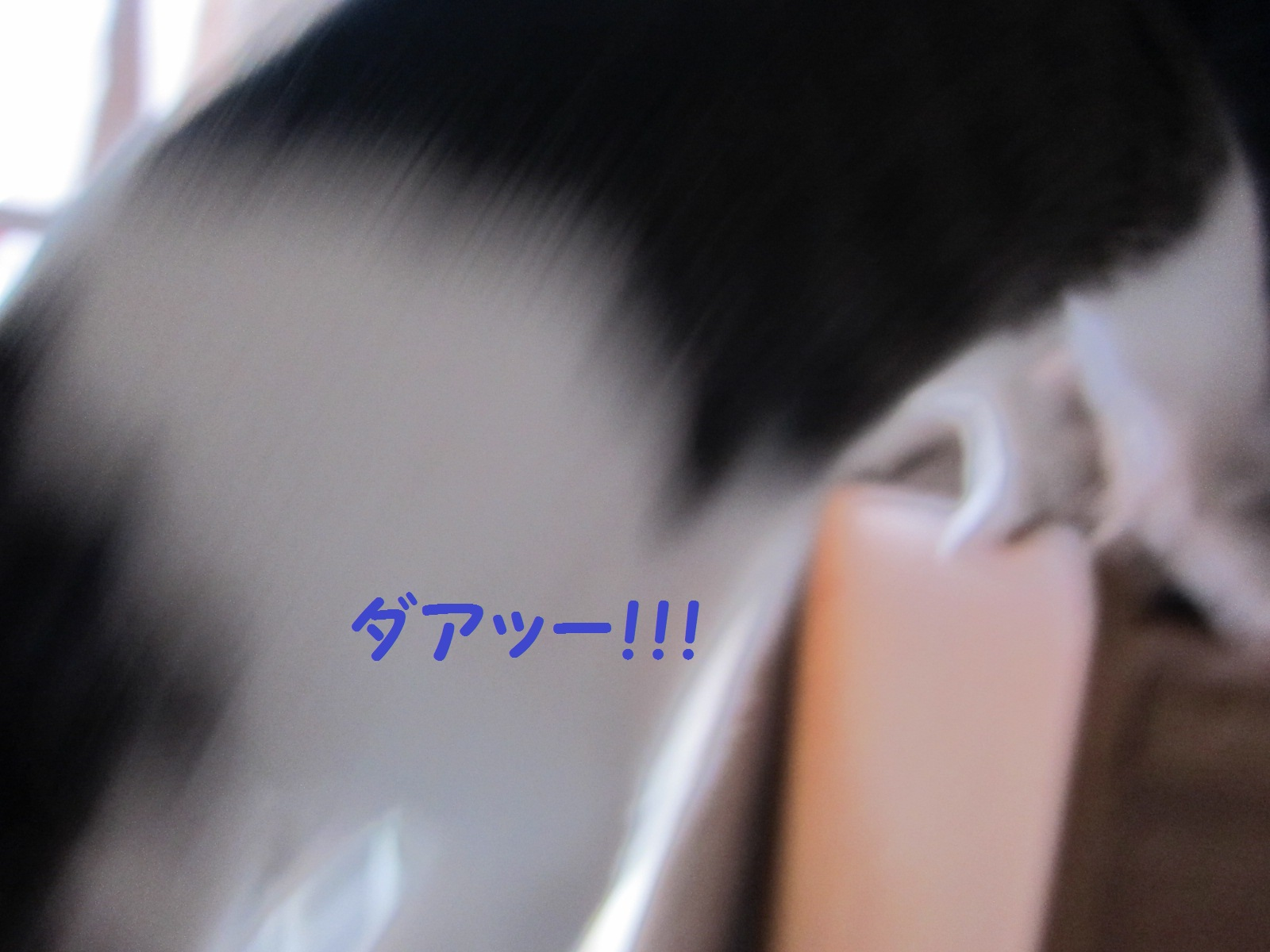 IMG_0496文字