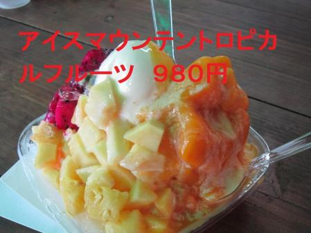 IMG_0259_convert_20110709230056.jpg