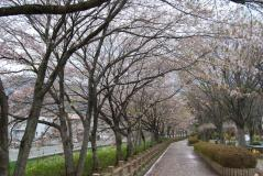 利根川公園01