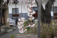 福寿院02