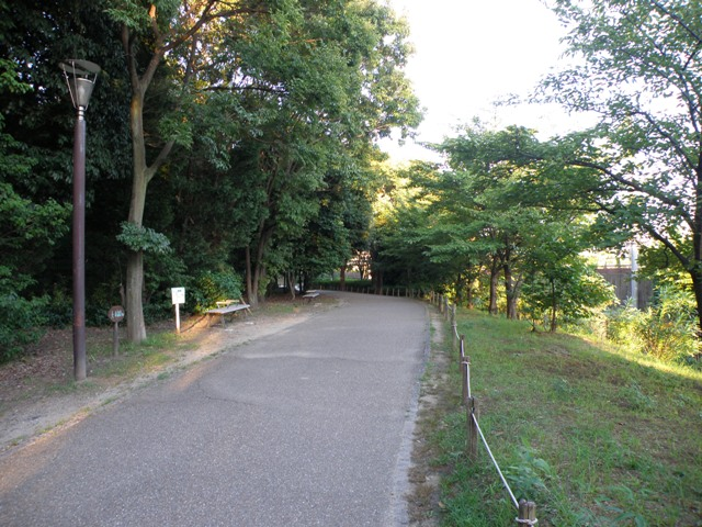 20120816 (10003)