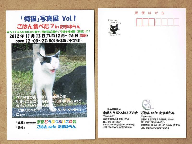 CCF20121110_00000.jpg