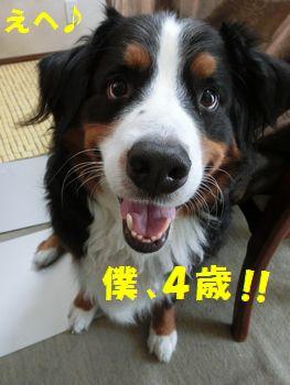 ぼっく4歳~!!
