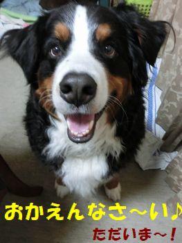 おかえりおかえり~!!