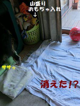サササッとね~!!