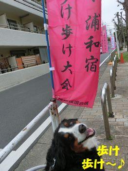 歩け歩け~!!