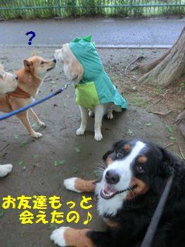 お友達もっと会えた~!!