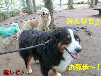 お散歩気分になったの~!