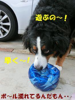 遊ぶ遊ぶの~!