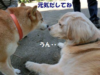 しゅ~ちゃん・・・