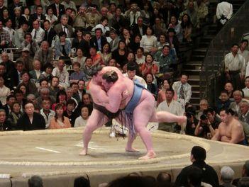 お相撲その3