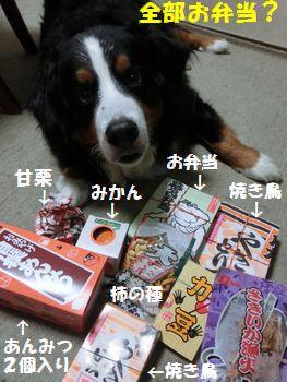 お弁当セットいっぱい~!!