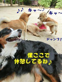 僕ここでいいの~!!!