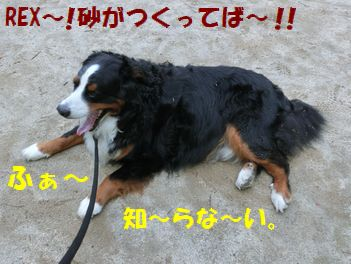 ふぁ~!聞こえませ~ん!