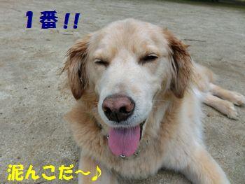 泥んこ1番はしゅ~ちゃんだ~!!