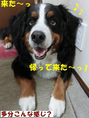 帰ってきたきた!!