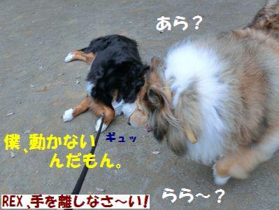だって今日暑いし~!!