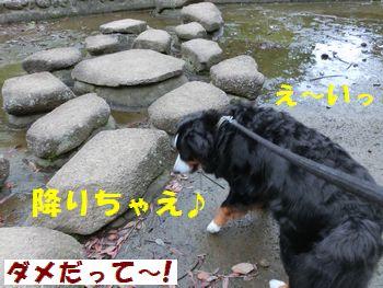 川底に降りちゃえ降りちゃえ~!!