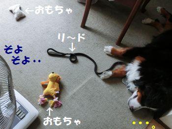 遊び疲れたふり~。